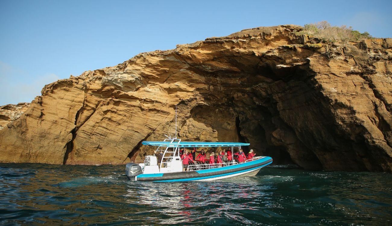 Sea Caves Pinneys Headland