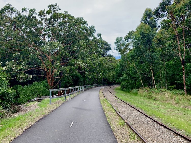 Fernleigh Track NSW